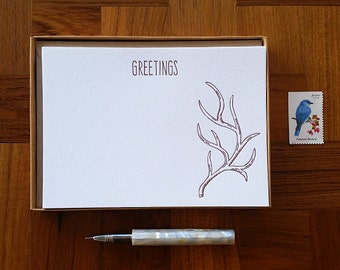 Greetings, Antler Motif, Boxed Set of 8 Letterpress Flat Notes, Boxed Stationery