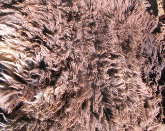 Raw Wool - Baa Baa Black Sheep Fleece