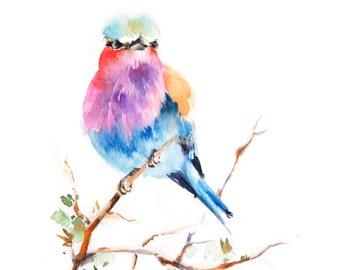 Lilac Bird Watercolor Painting Art Print, Bird Watercolour Wall Art