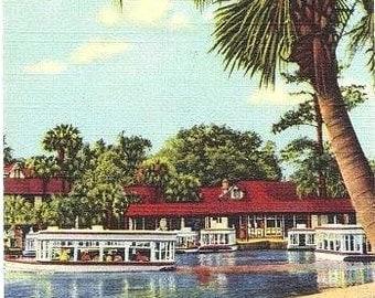 Vintage Florida Postcard - Glass Bottom Boats at Silver Springs (Unused)
