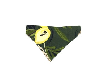 Small Green Floral Abstract Slip On Dog Bandana Over the Collar