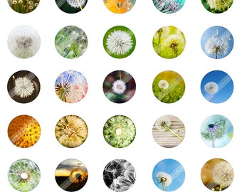 Lonely Dandelion Digital Collage Sheet,LD0001 Nature Flower Scenery Printable Download,1inch Circle Round Image,Cabochon,Bottle Cap,Clip Art