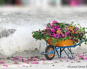 Flower Photography Fine Art Print, Wheelbarrow of Flowers Art Print, Zanzibar Travel Photography,  Large Print Flora Wall Decor