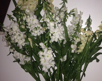 Flowers for your decor