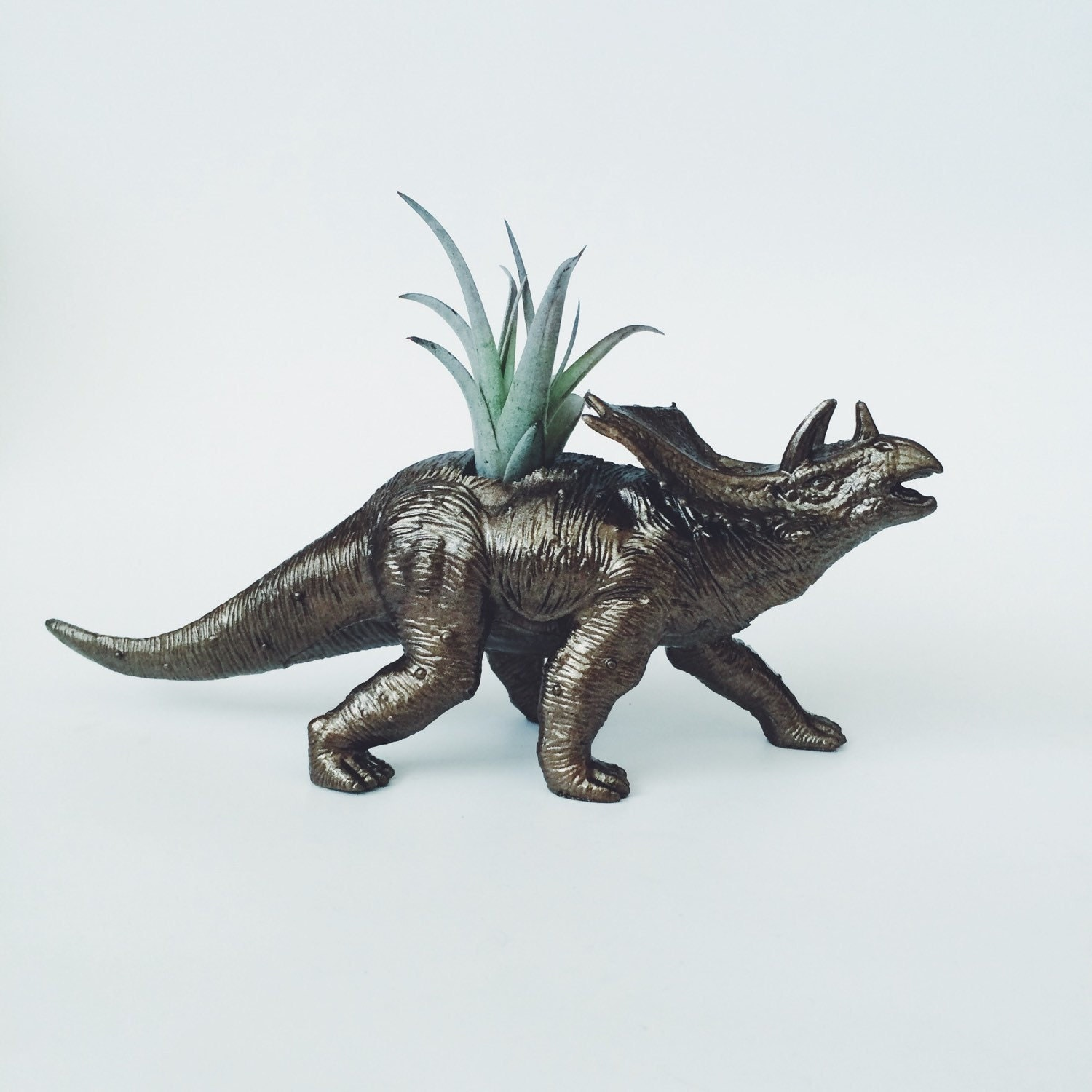 Large Bronze Triceratops Dino Planter With By