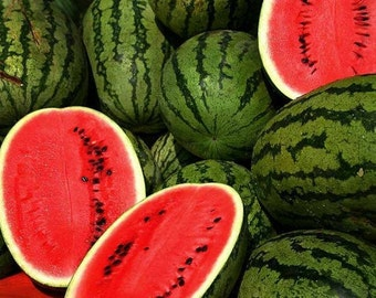 200 Jubilee Watermelon Seeds Melon