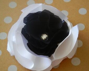 Hidding Rose, Black