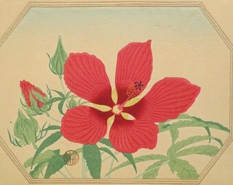 "Ukiyoe, Original Sōsaku-hanga, Woodblock print, antique, Tomikichiro Tokuriki, ""Hibiscus coccineus"""