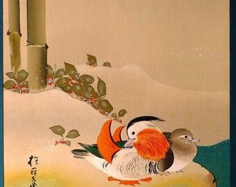 Japanese antique woodblock print, Sakai Hoitsu, Aix galericulata, Large size.