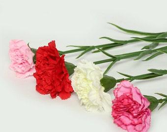 20 pcs Silk Artificial Carnation,Bridemaid Bouquet,Flowers for Bridal Wedding Party,Decor Floral Supplies(122-3)
