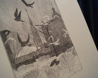 Doves. An Original Etching with Aquatint Print