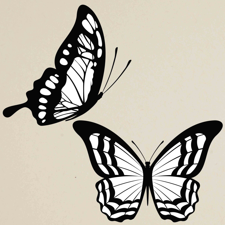 30%OFF Digital Butterfly Clip Art Butterfly Silhouette ...