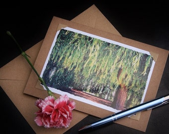 Handmade Card, photo note cards, Weeping Willow Tree, photo greeting cards, 7 x 5 blank note cards, photo cards, photography cards