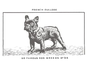 Dog Print -  French Bulldog (dark grey, Large)