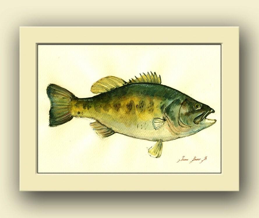 Black bass fish Largemouth bass fish watercolor animal