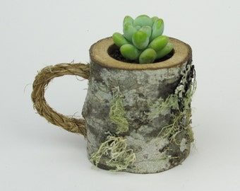 Succulent Plant Pot Air Plant Pot Air Plant Holder Air Plant Pod Mini Planter Miniature Pots Miniature Plant Pots Mini Plant Pots Rustic Pot