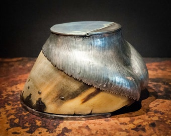 British Rowland Ward Taxidermy Horse Hoof with Sterling Silver Snuffbox