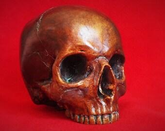 Lifesize Human skull - Bronze finish