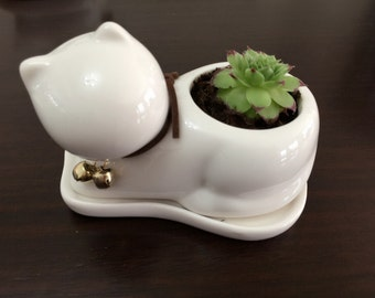 Miniature Cat Succulent Planter / Modern Art Centerpiece / Home Decoration / Miniature Desktop Garden