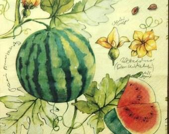 Watermelon Grape Plum decoupage paper napkin Fruit napkins Napkins for decoupage Blue Green