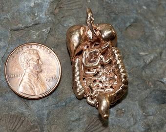 Digestive System Pendant Necklace |Anatomy Jewelry| Biology Pendant| Bronze Science Jewelry