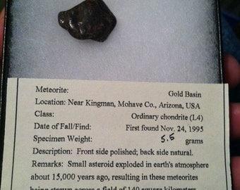 Meteorite: Gold Basin