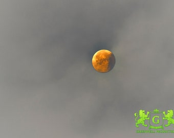 D4 Orange moon