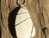 Handcrafted Wire Wrapped Authentic Seashell Necklace