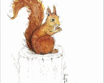 Limited Edition Print Red Squirrel