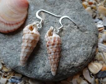 Florida Cerith Shell Earrings