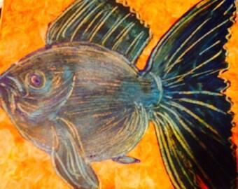 Smug fish