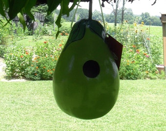 """Gourd Birdhouse - """"Pear"""""""