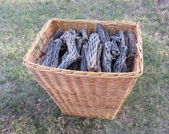StagHorn Cholla Wood - Naturals