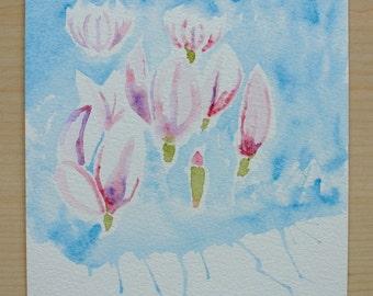 Spring Magnolias : Original Watercolour Sketch