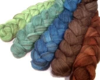 Handpainted Heathered BFL Wool Roving Bundle - 5 oz. MALLARD - Spinning Fiber