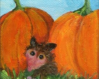 Possum, pumpkins mini canvas, Easel, small opossum animal art, possum mini canvas art painting, original painting, little possum painting