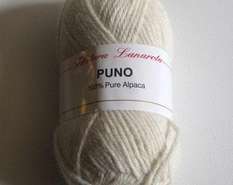 1 skein of Filatura Lanarota Puno yarn destash