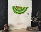 Lime Wedge Fungus: Gouache Painting of Shelf Fungus