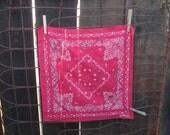 Vintage Trunk Up Red Bandana Elephant 100% cotton Floral ribbon designs 60s Bandana fast color Blue Kerchief