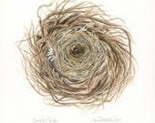 Empty Nest Print from Original Watercolor Illustration