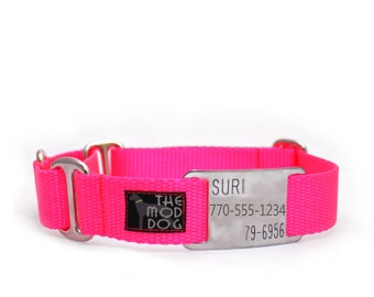 "1"" Dog Collar The Cullen buckle or martingale collar with flat ID tag"