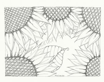 Adult Coloring Page, Children and Adults, Flower Art, Sunflowers