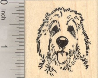Golden Doodle Rubber Stamp, Dog Hybrid of Poodle and Golden Retriever E27402 Wood Mounted