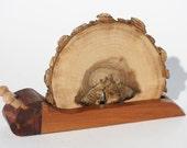 Set of 2 Handmade wooden SNAIL COASTERS