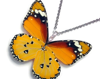 Real Butterfly Wing Necklace (WHOLE Danaus Chrysippus Butterfly - W118)