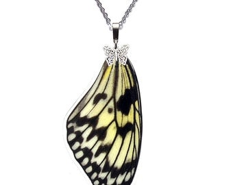 Handmade  Real Butterfly Wing Necklace (Idea leuconoe Forewing - N011)