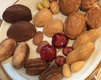 Fake nut assortment fake food walnuts almonds pecans peanuts macadamia pistachios hazel nut and Brazil nuts home staging teaching tools
