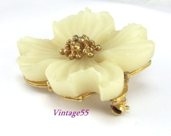 Brooch Celluloid Dogwood Floral Gold tone
