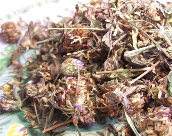Organic Red Clover Blossoms by the ounce - dried bulk herb whole flower petals - for teas tinctures bath products oz lb coyoterainbow