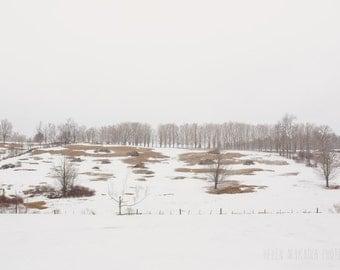winter photograph, snow winter landscape, fresh snow, bare trees, barren landscape, western massachusetts, peaceful and calm, wall art
